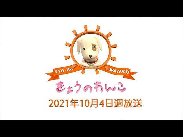 2021/10/4週放送 きょうのわんこ
