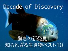 (日本語吹替版)驚きの新発見!知られざる生き物ベス…