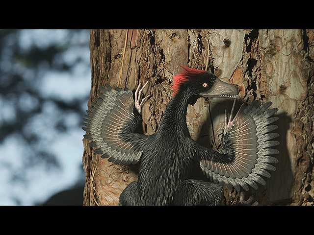 鳥は恐竜の子孫なのか