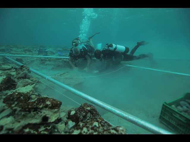 (日本語吹替版)地中海に沈む ギリシャ古代都市の謎