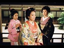 #1 【第一部】将軍の女たち~運命の出逢い