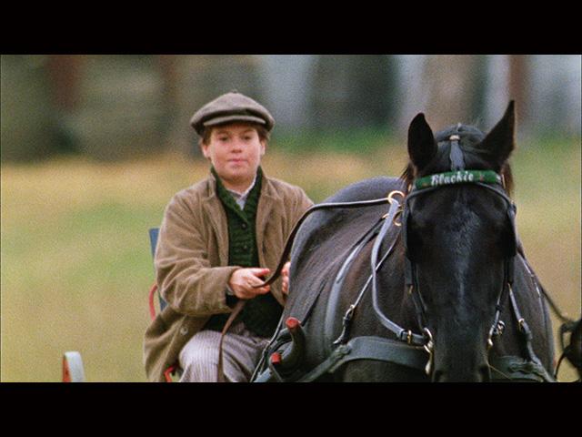 第4話 (字幕版)ぼくの馬ブラッキー