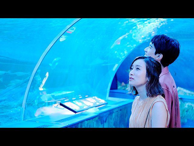 #2 憧れの水族館デート