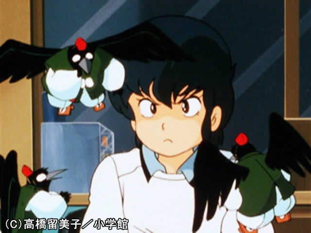 #68 花ムコの名は竜之介