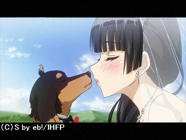 #12 犬とハサミは使いよう