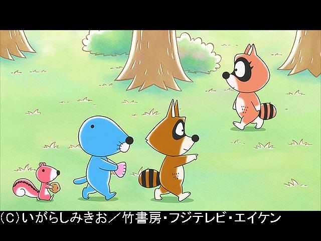 #155 2019/4/6放送 アライグマくんの恋