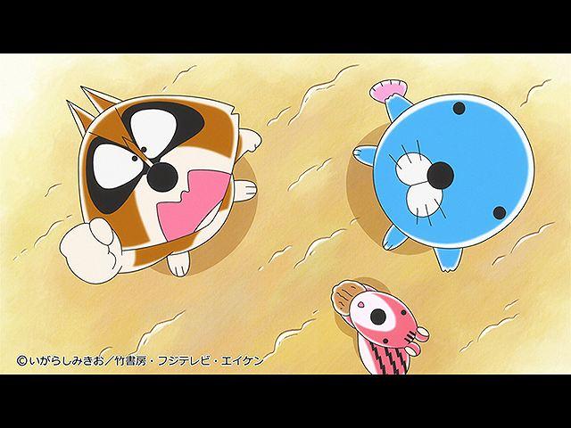 #193 2019/12/28放送 アライグマくんの旅立ち