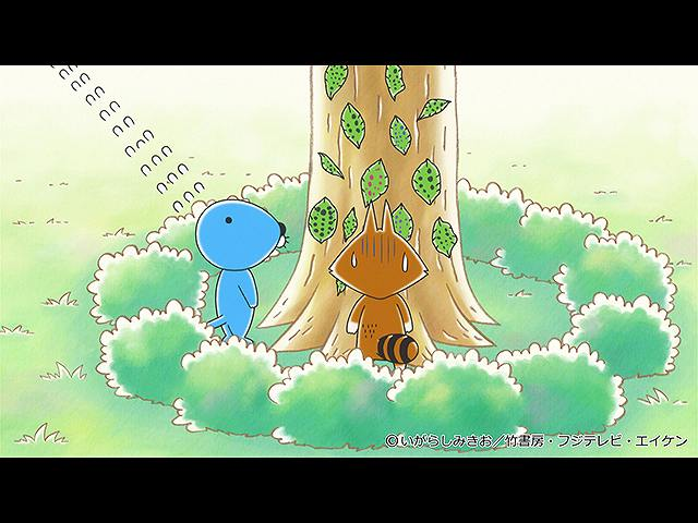 #223 2020/8/29放送 アライグマくんのケサン