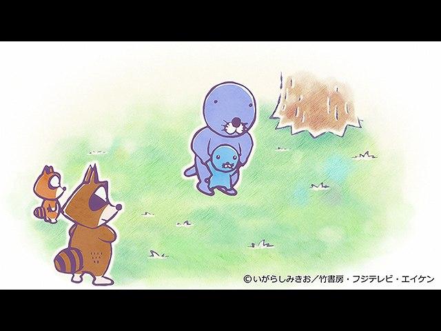 #248 ぼのちゃん~アライグマちゃん2