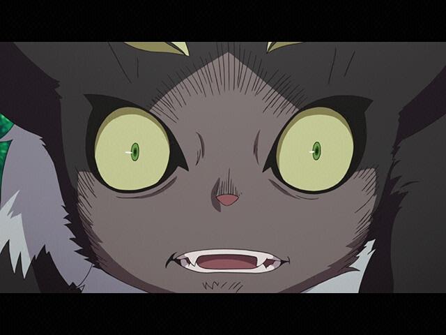 #10 黒猫