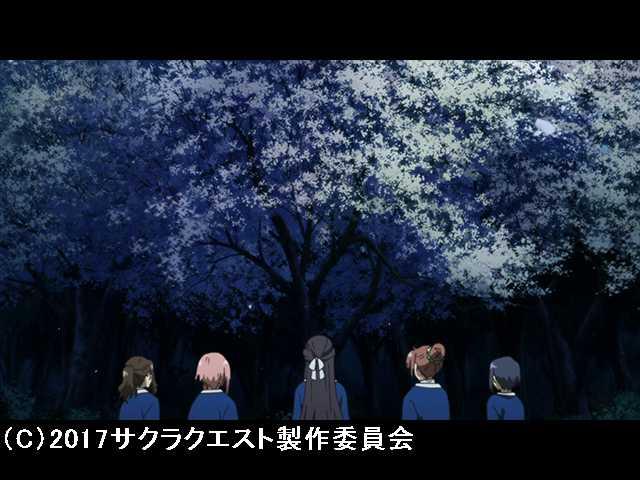 第25話 桜の王国