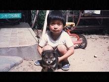 第二十一回「子犬のクロ」/第二十二回「直線1000m」
