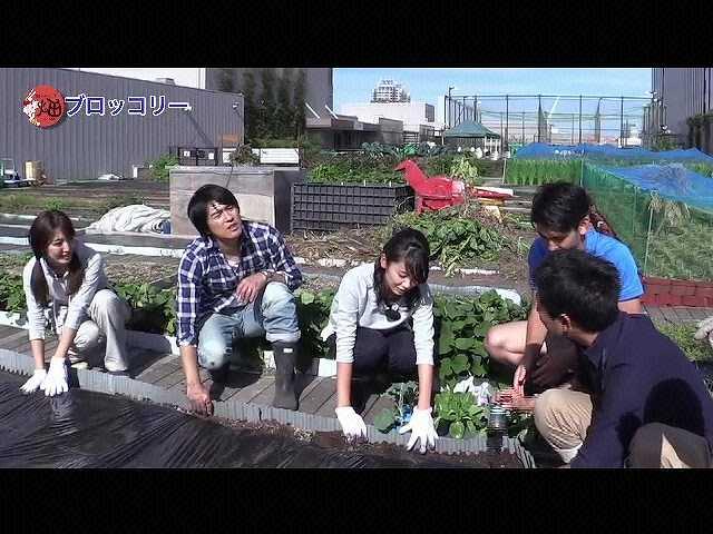 #5 「秋冬野菜を植える!」