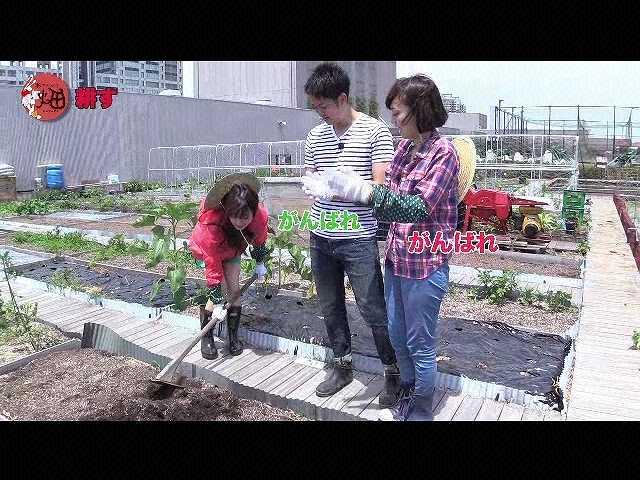 第3回 夏野菜を植えよう!