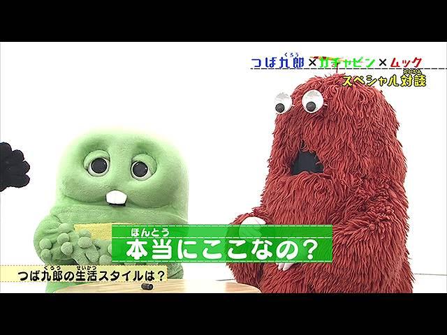 #70 2019/12/8放送 ガチャムク