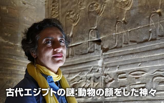 古代エジプトの謎:動物の顔をした神々