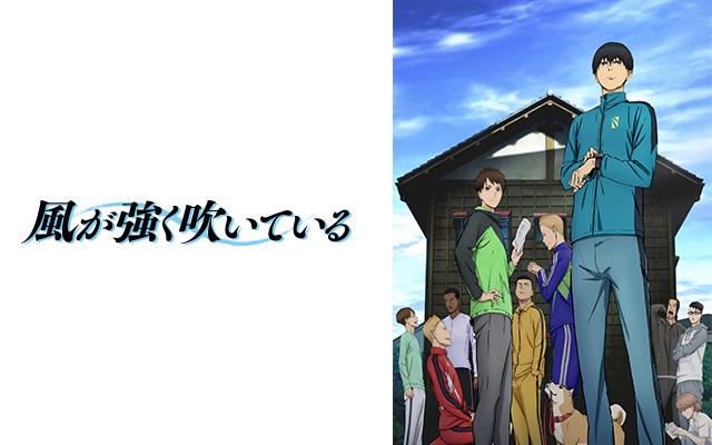 風が強く吹いている TVアニメ